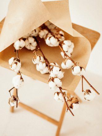 ramo algodón